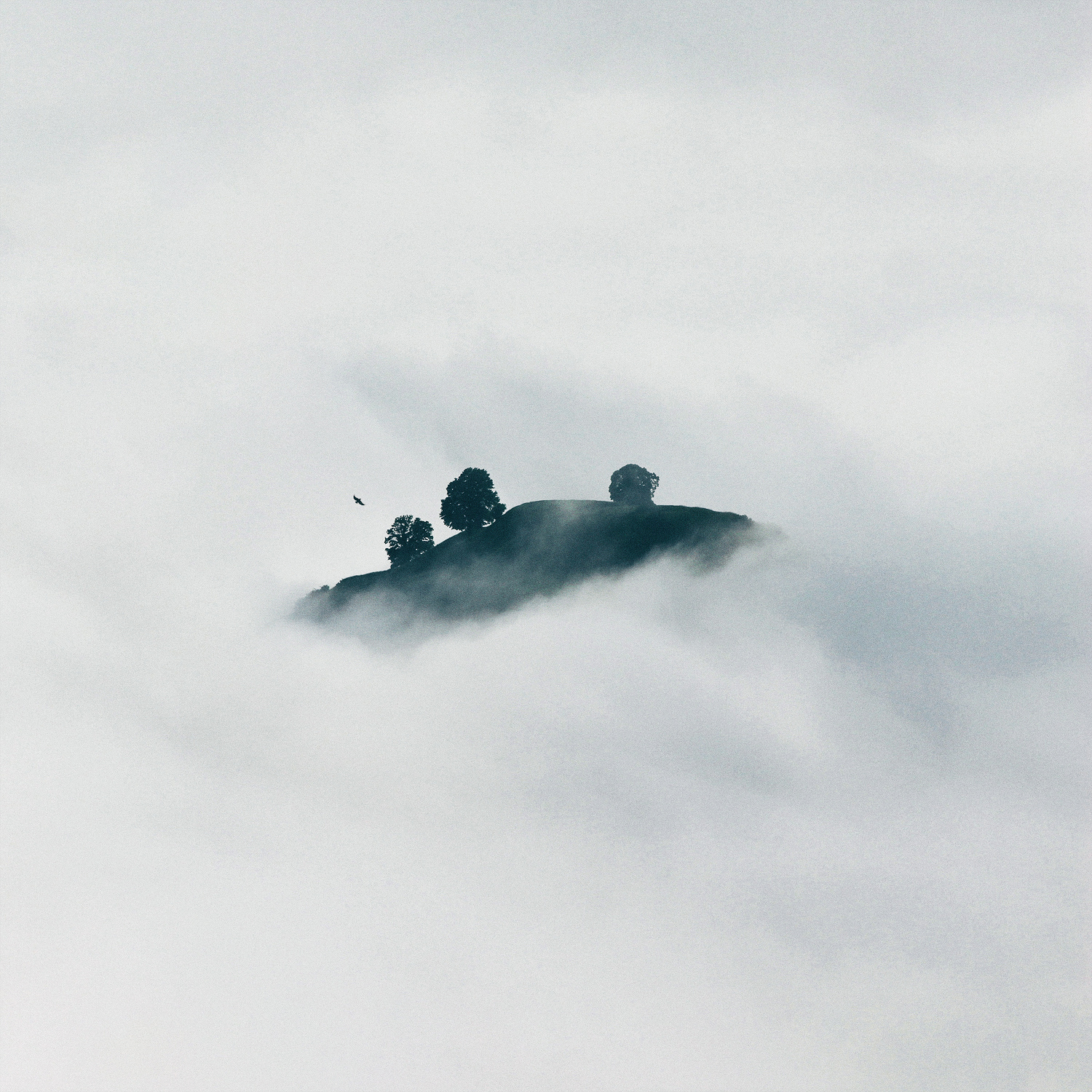 In the Clouds by Herm the Younger